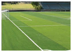 Football court pitch